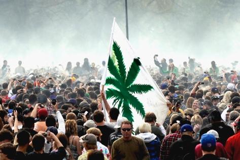 marijuana_colo_rect